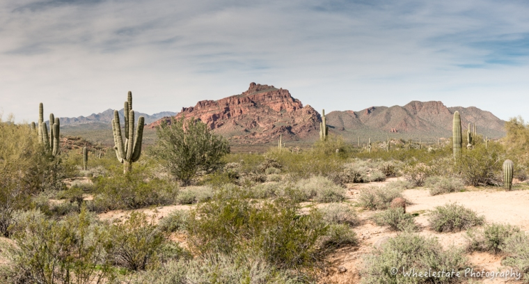 _BDS8454-Pano